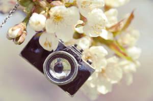 camera necklace by Holunder