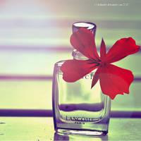 LANCOME Perfume by Holunder