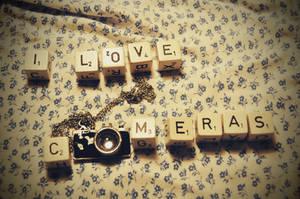 i love camera by Holunder