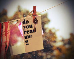 do you read me by Holunder