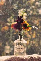 elder vine bottle with flowers by Holunder