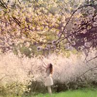 secret garden by Holunder
