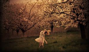 twilight by Holunder