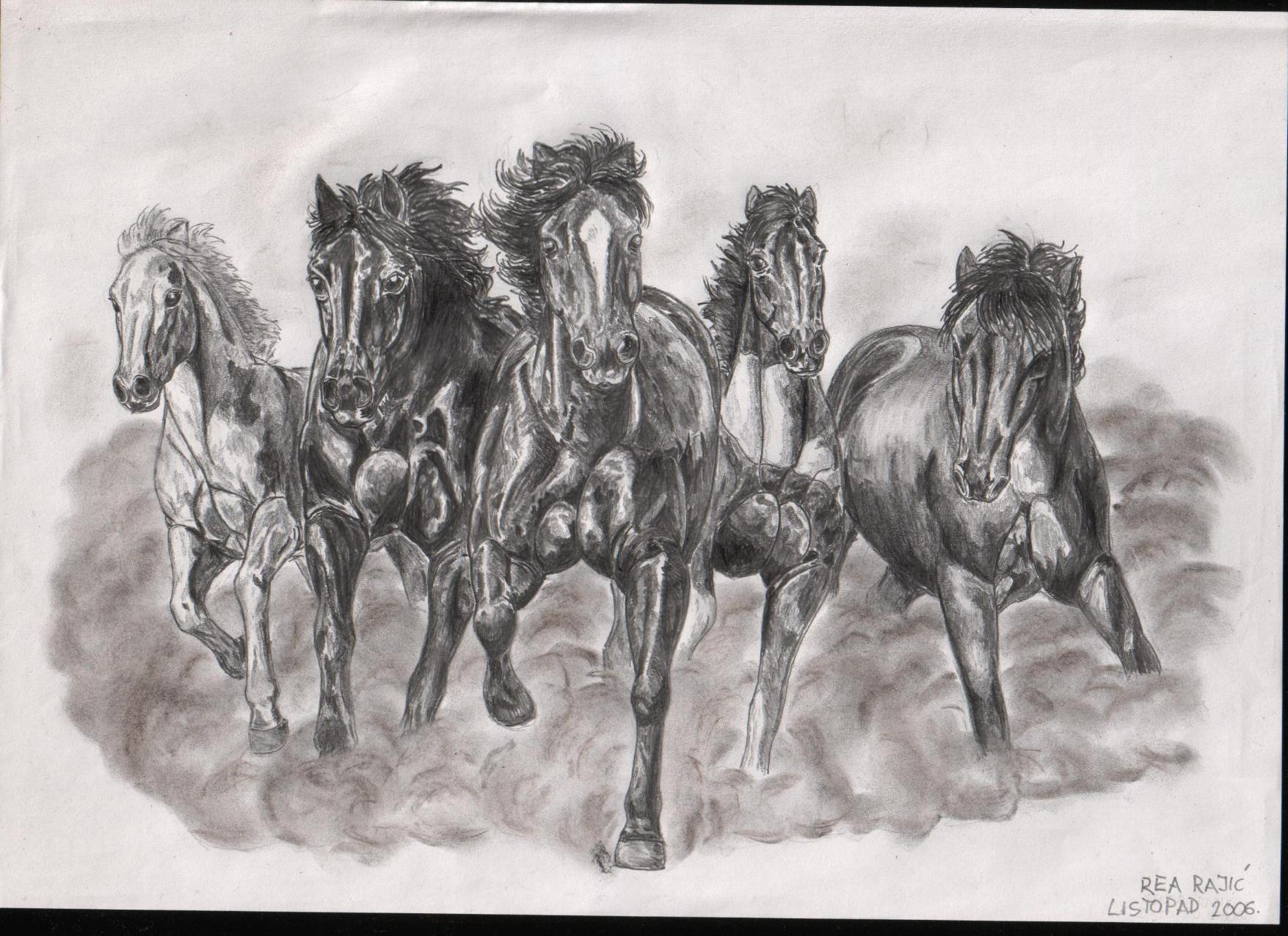 Wild Horses by artifexa on DeviantArt