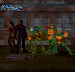 Daredevil Plus Elektra and The Ninja Turtles