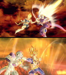 Fight for the Saiyan race