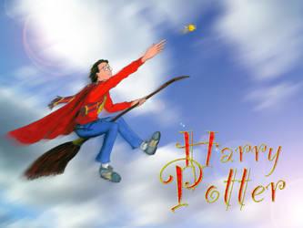 Harry Potter Desktop by JSPailly