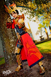 Diablo 3 Wizard cosplay - Firebird's Finery set