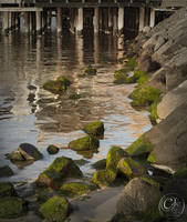 Green rocks by jakwak