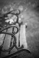 Bench by Woz1