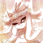 The Magic of FLOWER CROWNS