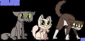 Shropshire Cat Poster Sample