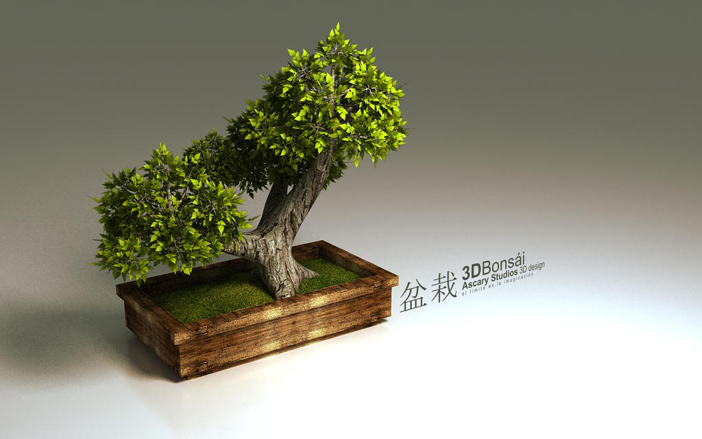 Bonsai by hikaruga