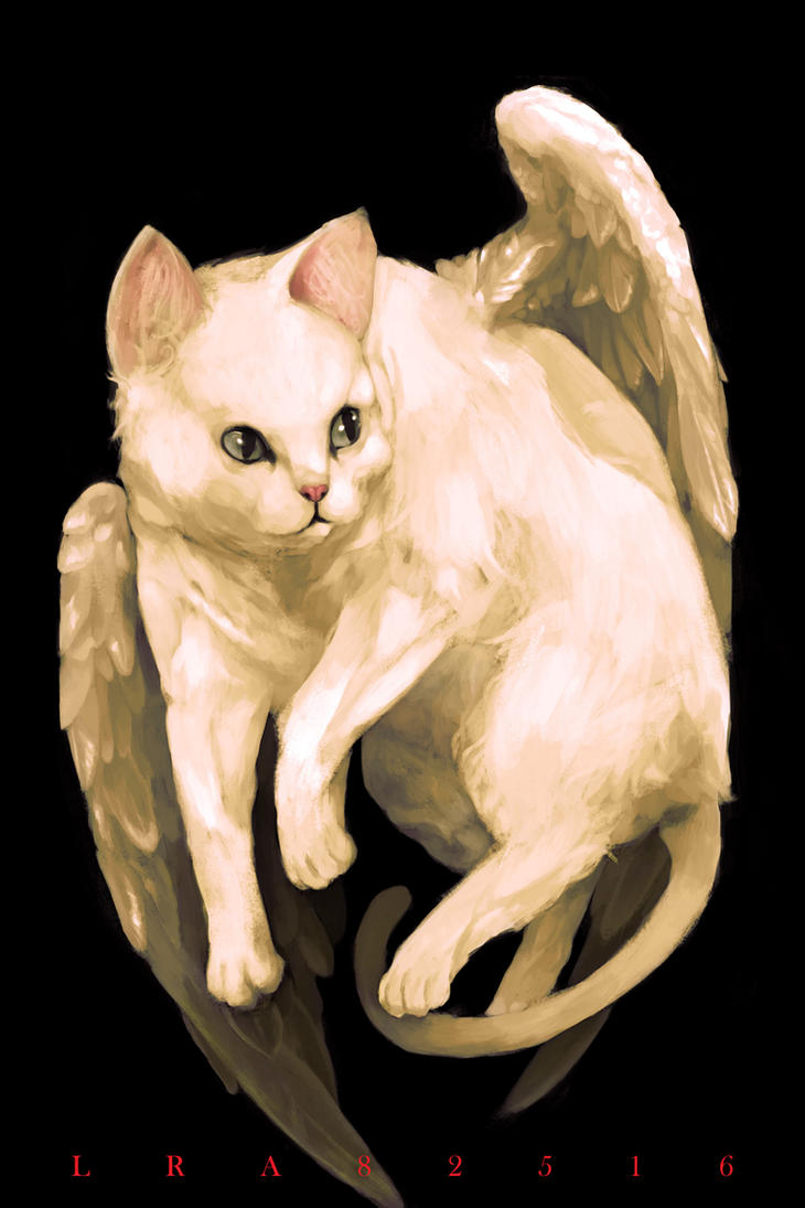 Winged Cat by zenithcollector