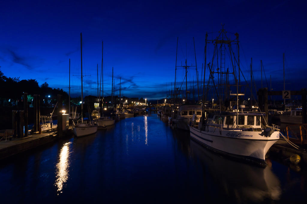 Marina at blue hour by DavHed