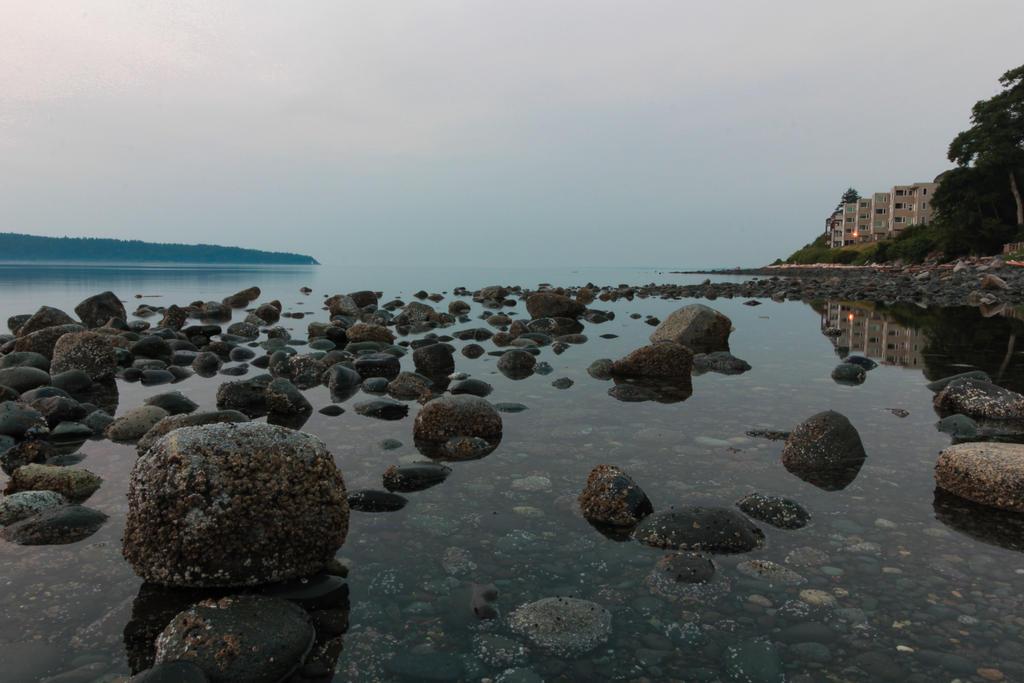 Hazy Beach by DavHed