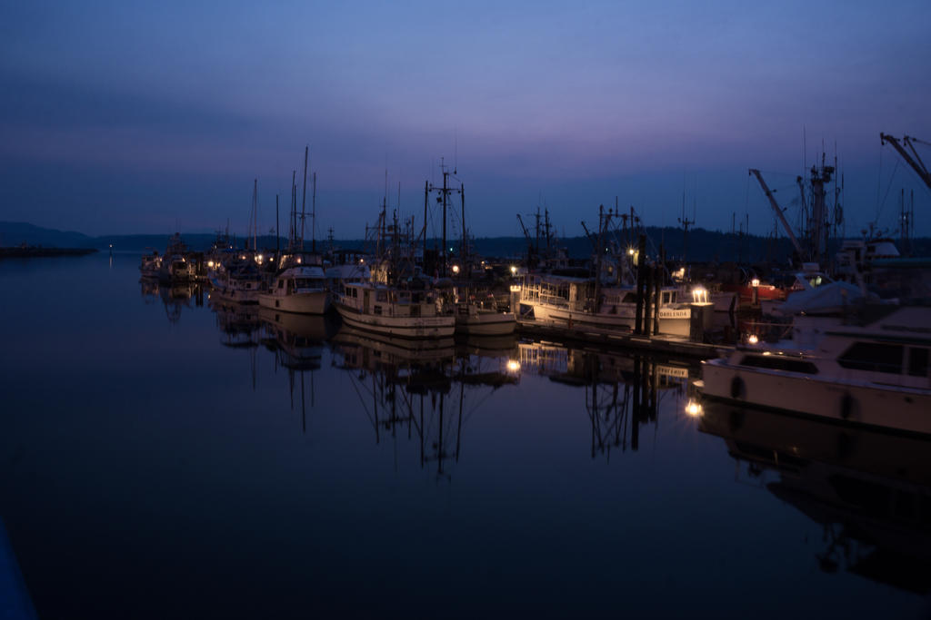 Morning Harbour by DavHed