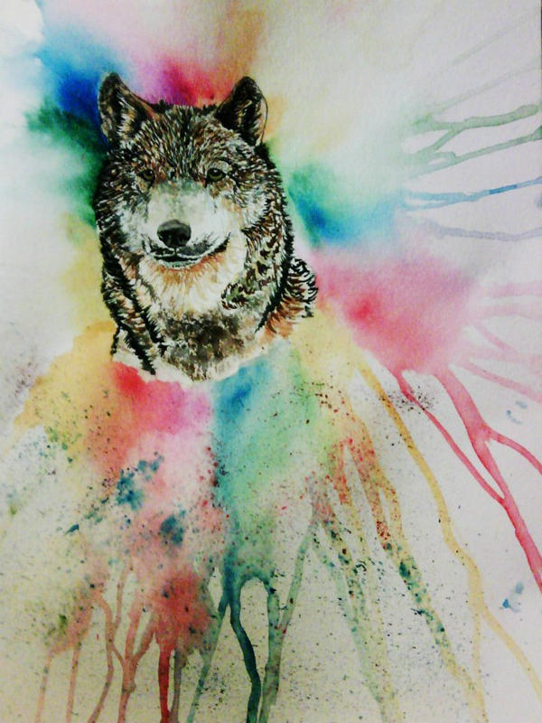 Spirit Colors by Blackwolfoffireworks