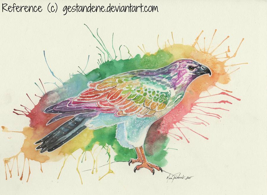 Rainbow Hawk by Blackwolfoffireworks