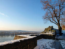 Snow and the Danube