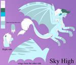 Sky High - Ref Sheet