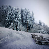 winter fairy tale V by maticgolob