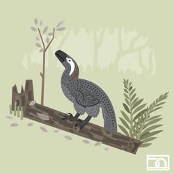 Utahraptor in the forest by anatotitan
