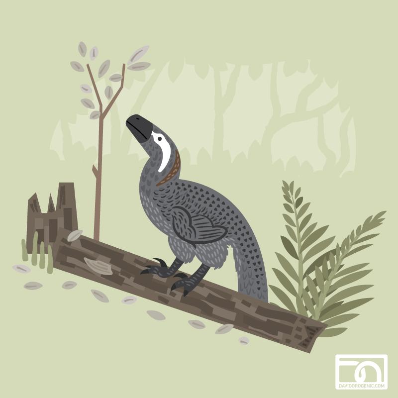 Utahraptor in the forest by anatotitan