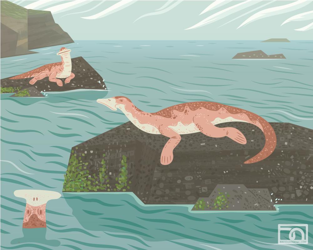 Atopodentatus basking by anatotitan