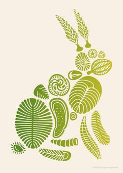 Precambrian Rabbit