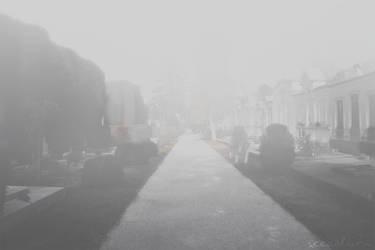 The Fog by Cio-Chou