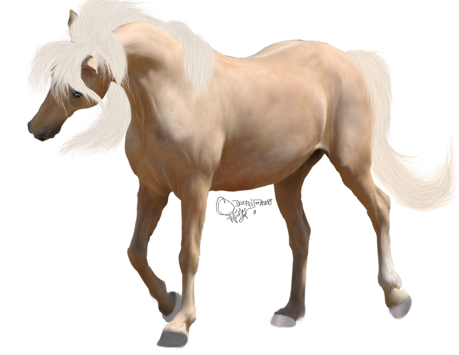 صور احصنه بدون خلفيه png سكرابز حصان png صور احصنه precut_palomino_by_darknfallen88-d4wlogw.png
