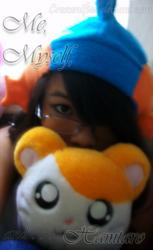 Me, Myself, and Hamtaro