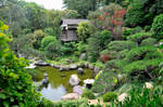 Japanese Garden House and Pond