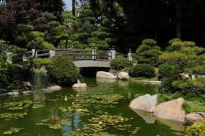 Japanese Footbridge by AndySerrano