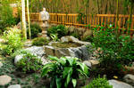 Japanese Garden and Pool