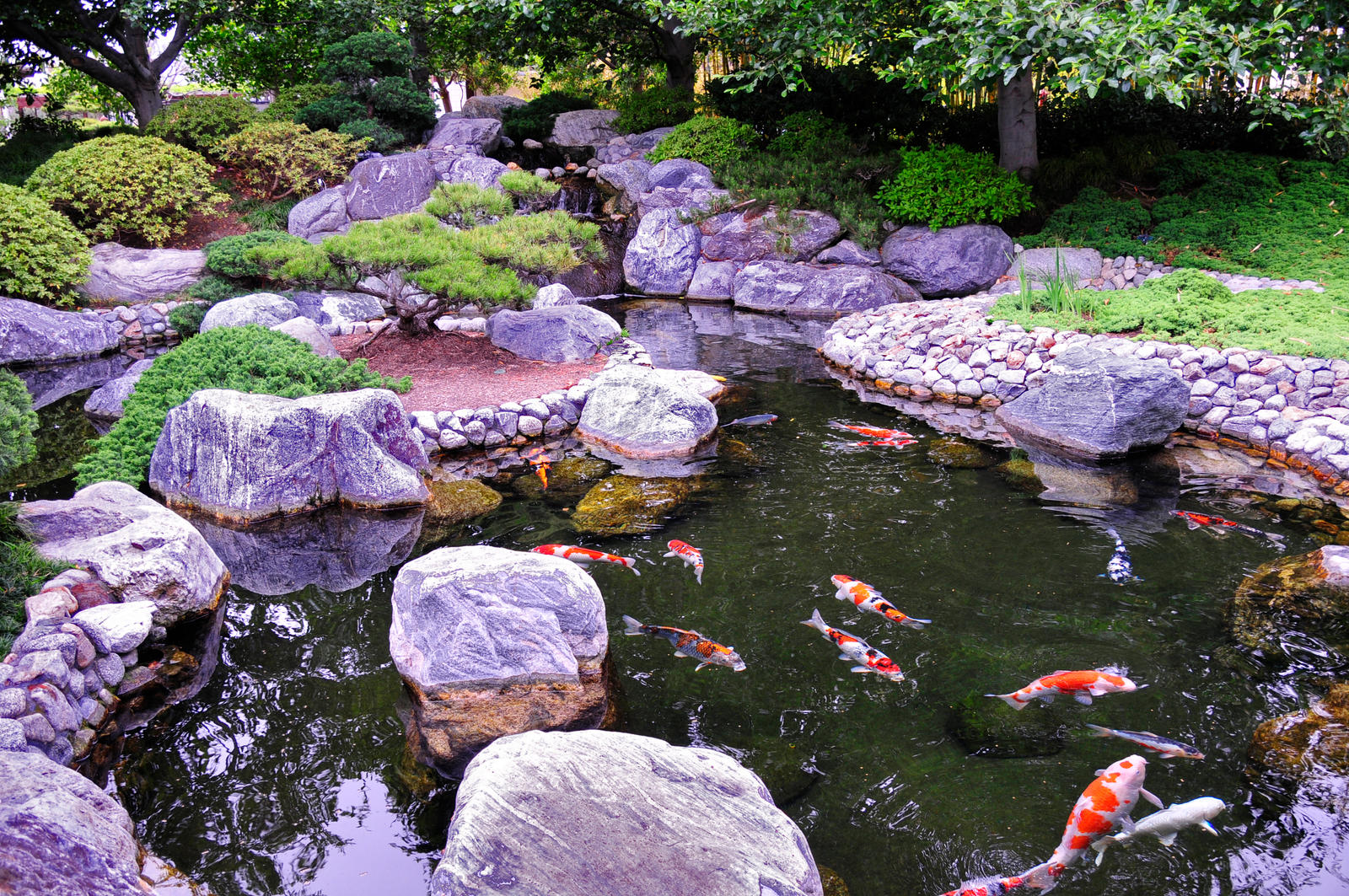 Japanese garden tranquil koi by andyserrano on deviantart for Koi water garden