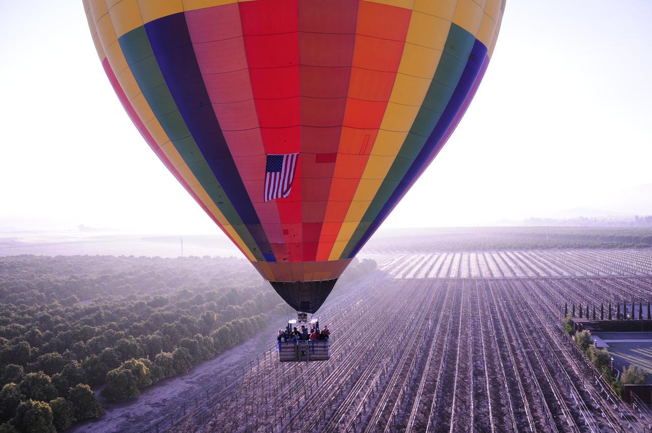 Wild Balloon Ride by AndySerrano