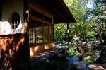 Teahouse and Pond