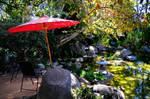 Two Ponds and Red Umbrella