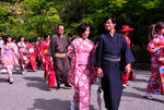 March of the Pink Kimonos