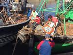 Fishermen Port d'Essaouira Morocco