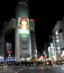 Shibuya at Night 5