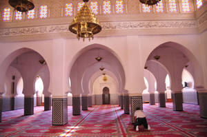 Praying in the Mosque