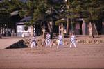 Itsukushima Martial Artists