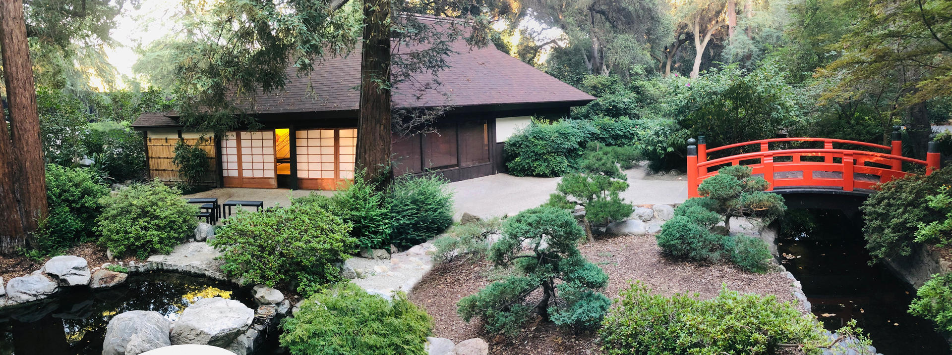 Japanese Garden Tea House and Bridge