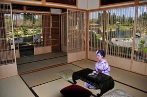Japanese Teahouse and Panorama