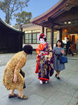Maiko and Wedding Guest
