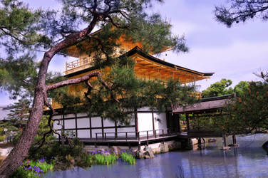 Kinkakuji Golden Pavilion 5