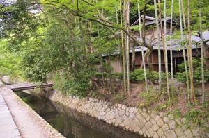 House Bamboo Bridge on Philosopher's walk